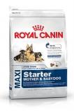 Hrana pentru caini Maxi Starter mama si pui 15 kg Royal Canin