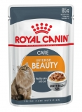 Hrana pentru pisici Intense Beauty 12 portii x 85 g Royal Canin