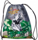 Sac sport Big Planet S-Cool