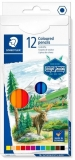 Creioane colorate Design Journey, 12 culori/set Staedtler