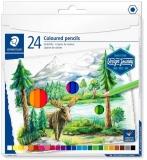 Creioane colorate Design Journey, 24 culori/set Staedtler