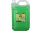 Detergent lichid pentru vase Economy Apple 5 L Thomas Maister