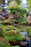 Calendar Gardens 2020