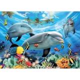 Puzzle delfini, 300 piese Ravensburger
