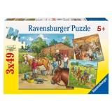 Puzzle lumea cailor , 3x49 piese Ravensburger