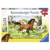 Puzzle lumea cailor, 2x24 piese Ravensburger