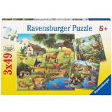 Puzzle padure, zoo si animale domestice, 3x49 piese Ravensburger
