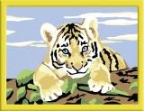 Pictura pe numere pui de tigru Ravensburger