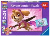 Puzzle Patrula Catelusilor Ravensburger
